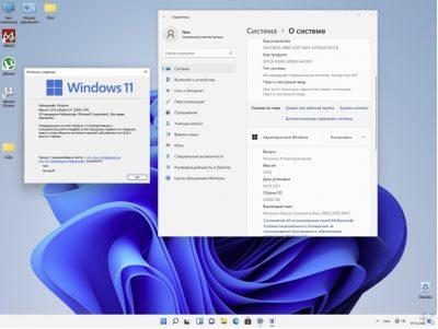 Windows 11 x64 Enterprise